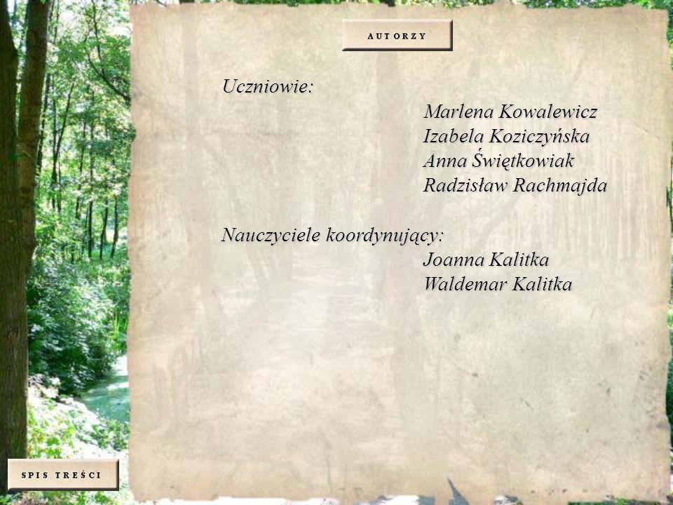 Uczniowie: Marlena Kowalewicz. Izabela Koziczyńska. Anna Świętkowiak. Radzisław Rachmajda. Nauczyciele koordynujący: