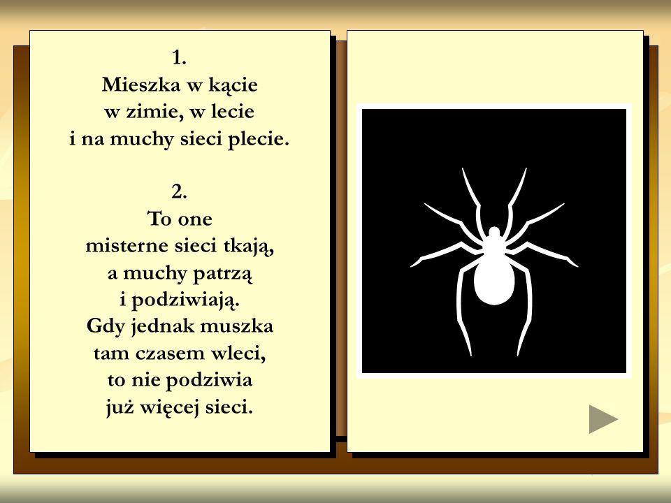 1. Mieszka w kącie. w zimie, w lecie. i na muchy sieci plecie. 2. To one. misterne sieci tkają,