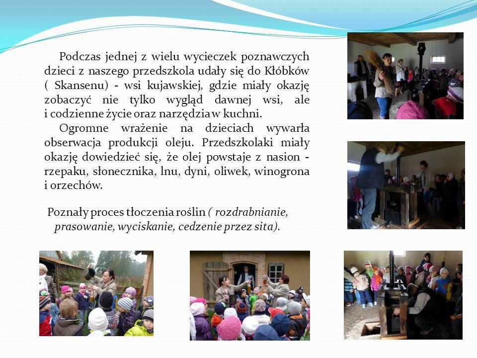 Podczas jednej z wielu wycieczek poznawczych dzieci z naszego przedszkola udały się do Kłóbków ( Skansenu) - wsi kujawskiej, gdzie miały okazję zobaczyć nie tylko wygląd dawnej wsi, ale i codzienne życie oraz narzędzia w kuchni.
