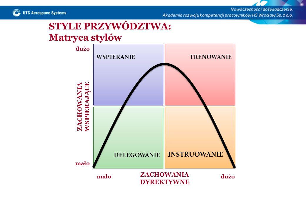 STYLE PRZYWÓDZTWA: Matryca stylów