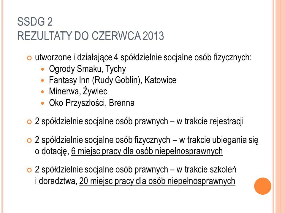 SSDG 2 REZULTATY DO CZERWCA 2013