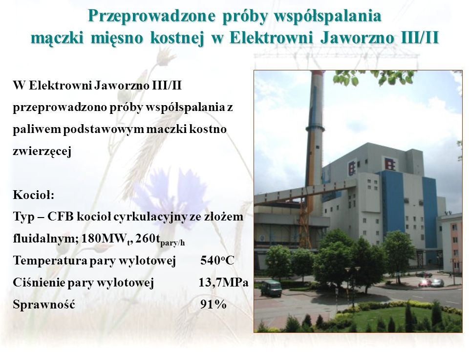 Przeprowadzone próby współspalania mączki mięsno kostnej w Elektrowni Jaworzno III/II