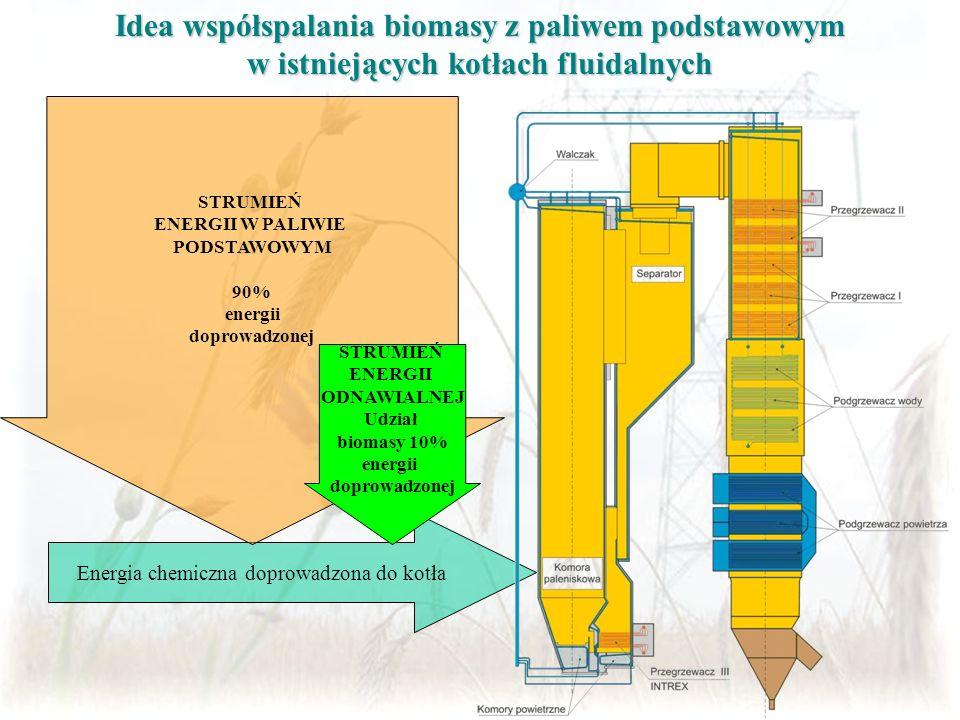 Idea współspalania biomasy z paliwem podstawowym w istniejących kotłach fluidalnych