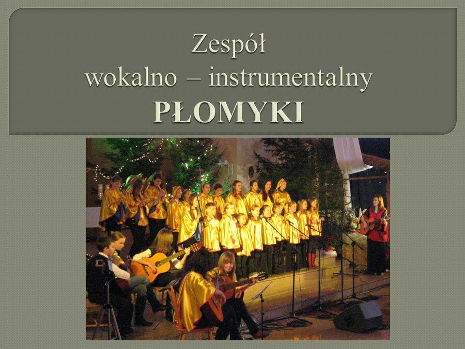 Zespół wokalno – instrumentalny PŁOMYKI