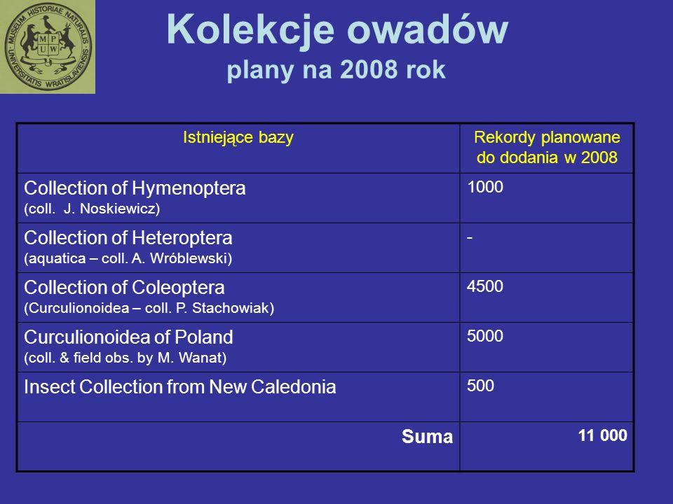 Kolekcje owadów plany na 2008 rok