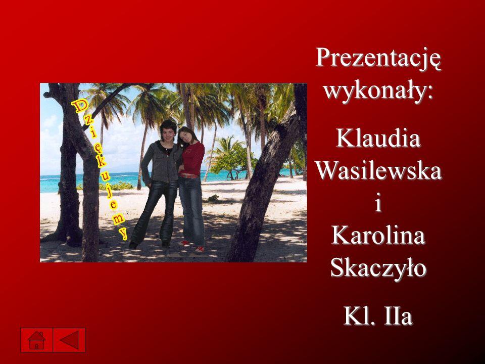 Prezentację wykonały: Klaudia Wasilewska i Karolina Skaczyło