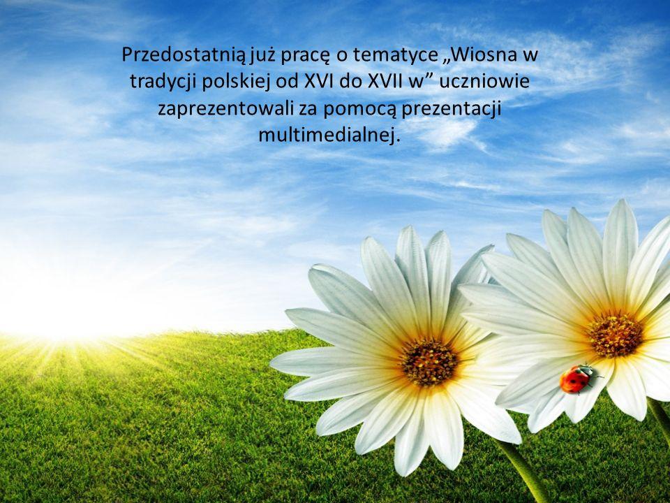 """Przedostatnią już pracę o tematyce """"Wiosna w tradycji polskiej od XVI do XVII w uczniowie zaprezentowali za pomocą prezentacji multimedialnej."""