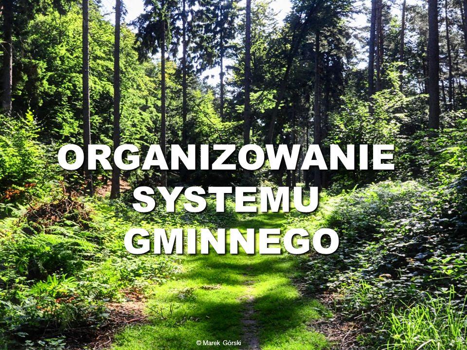 ORGANIZOWANIE SYSTEMU GMINNEGO © Marek Górski