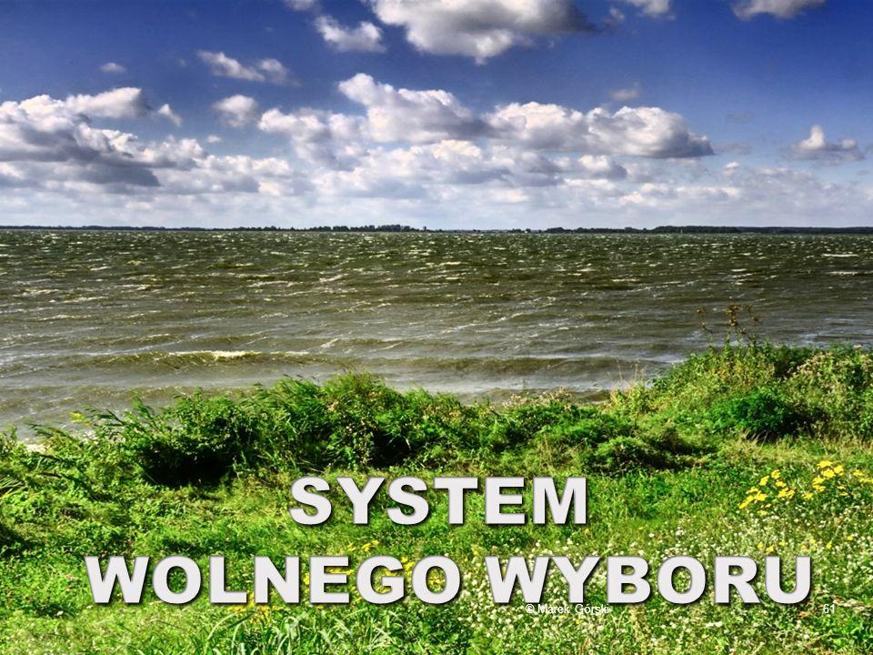 SYSTEM WOLNEGO WYBORU © Marek Górski