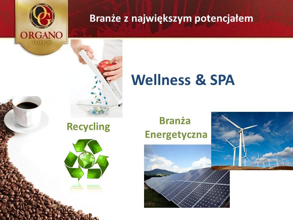 Wellness & SPA Branże z największym potencjałem Branża Recycling