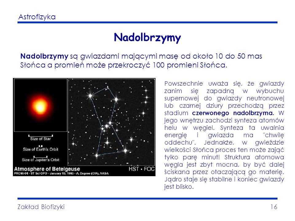 Nadolbrzymy Nadolbrzymy są gwiazdami mającymi masę od około 10 do 50 mas Słońca a promień może przekroczyć 100 promieni Słońca.