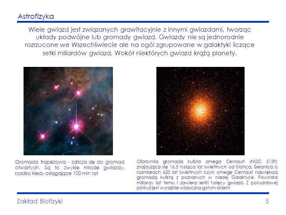 Wiele gwiazd jest związanych grawitacyjnie z innymi gwiazdami, tworząc układy podwójne lub gromady gwiazd. Gwiazdy nie są jednorodnie rozrzucone we Wszechświecie ale na ogól zgrupowane w galaktyki liczące setki miliardów gwiazd. Wokół niektórych gwiazd krążą planety.