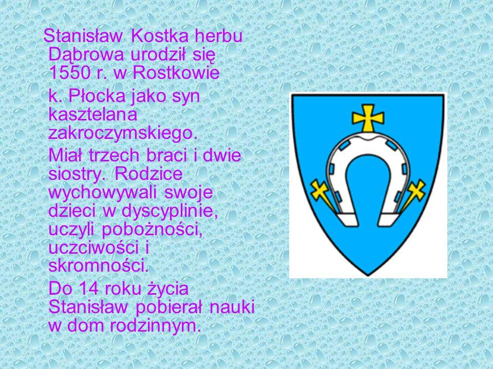 k. Płocka jako syn kasztelana zakroczymskiego.