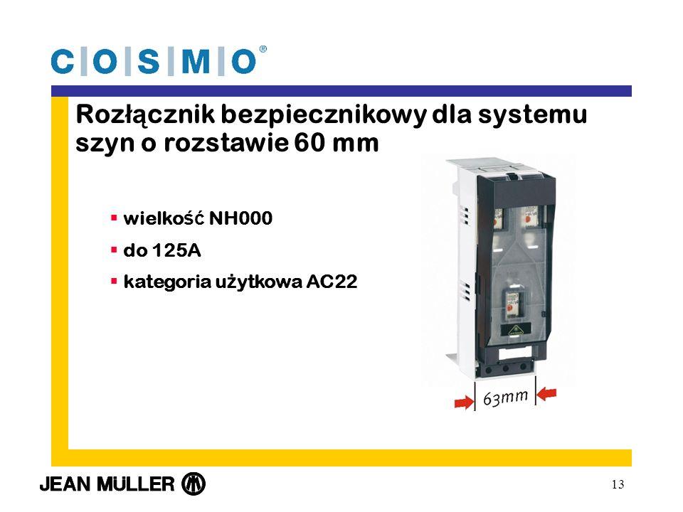 Rozłącznik bezpiecznikowy dla systemu szyn o rozstawie 60 mm