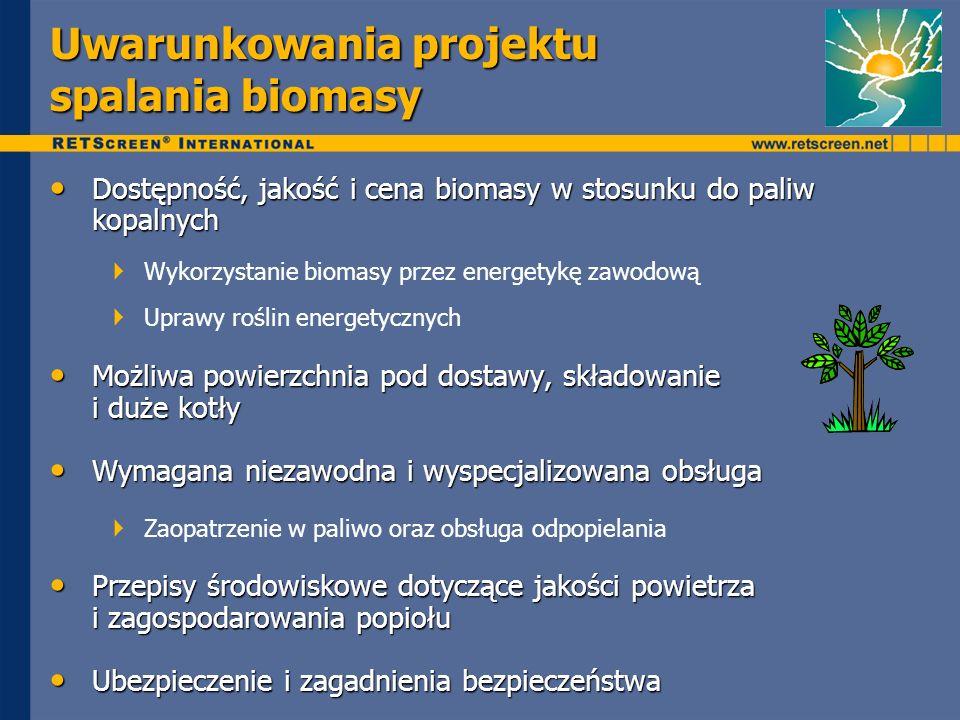 Uwarunkowania projektu spalania biomasy