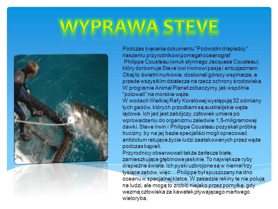 Wyprawa Steve Podczas kręcenia dokumentu Podwodni drapieżcy