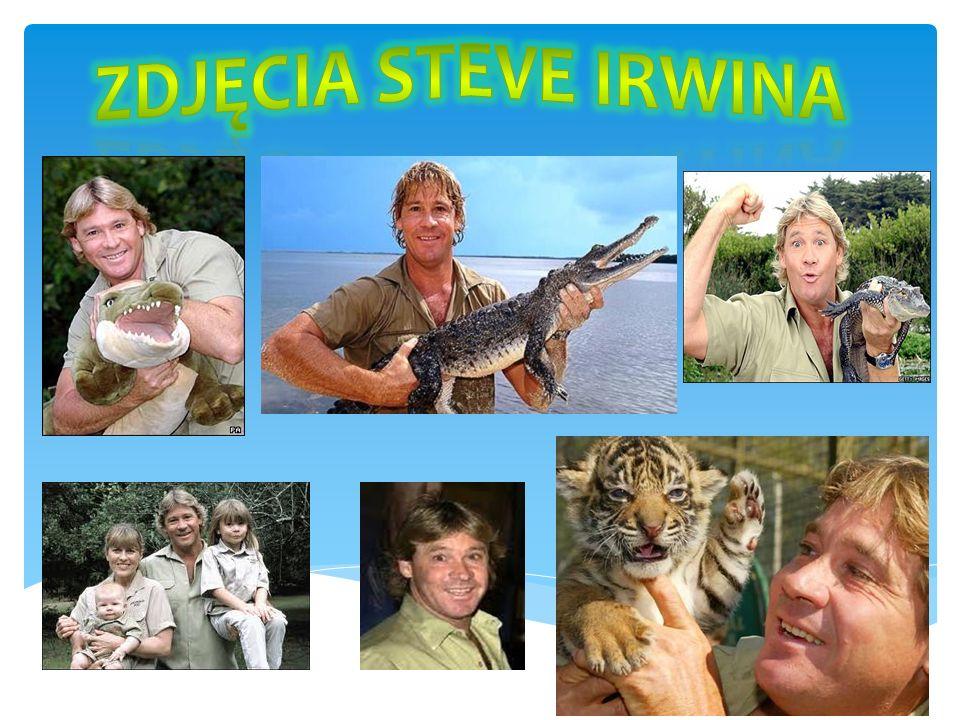 Zdjęcia Steve Irwina