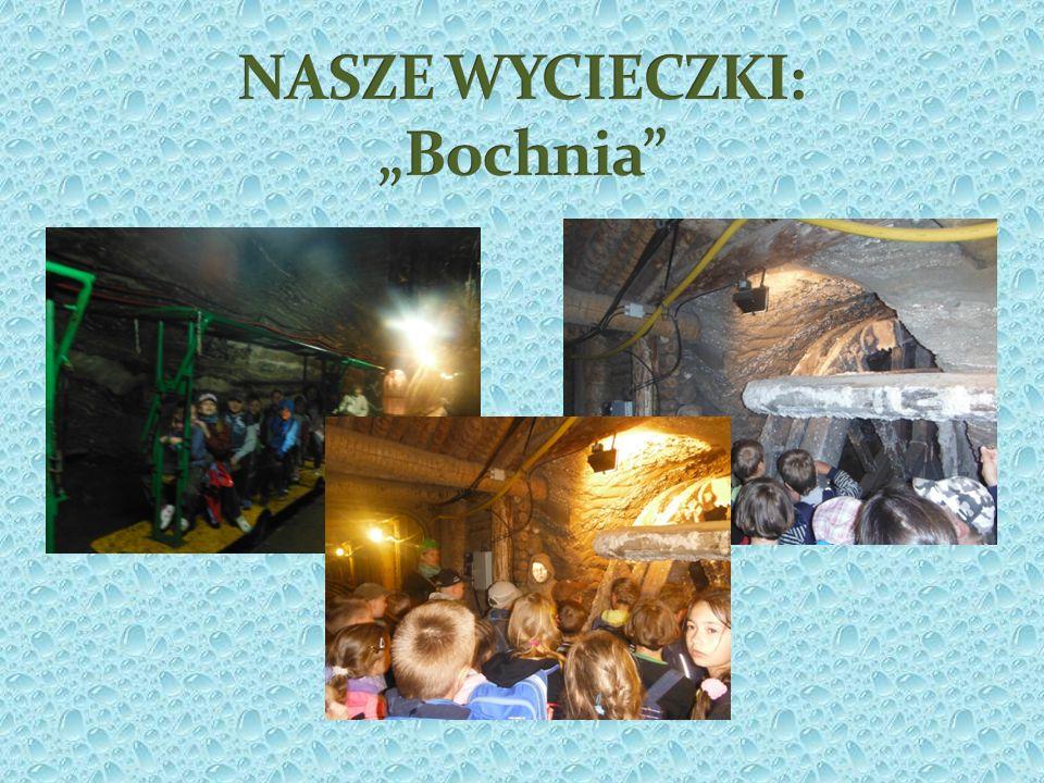 """NASZE WYCIECZKI: """"Bochnia"""