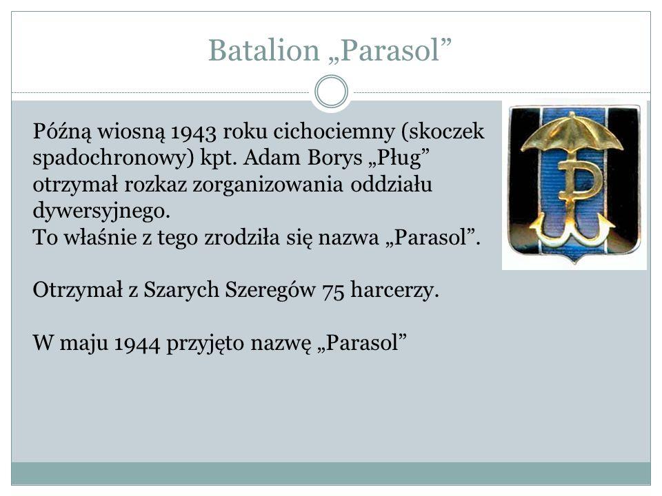 """Batalion """"Parasol Późną wiosną 1943 roku cichociemny (skoczek spadochronowy) kpt. Adam Borys """"Pług"""