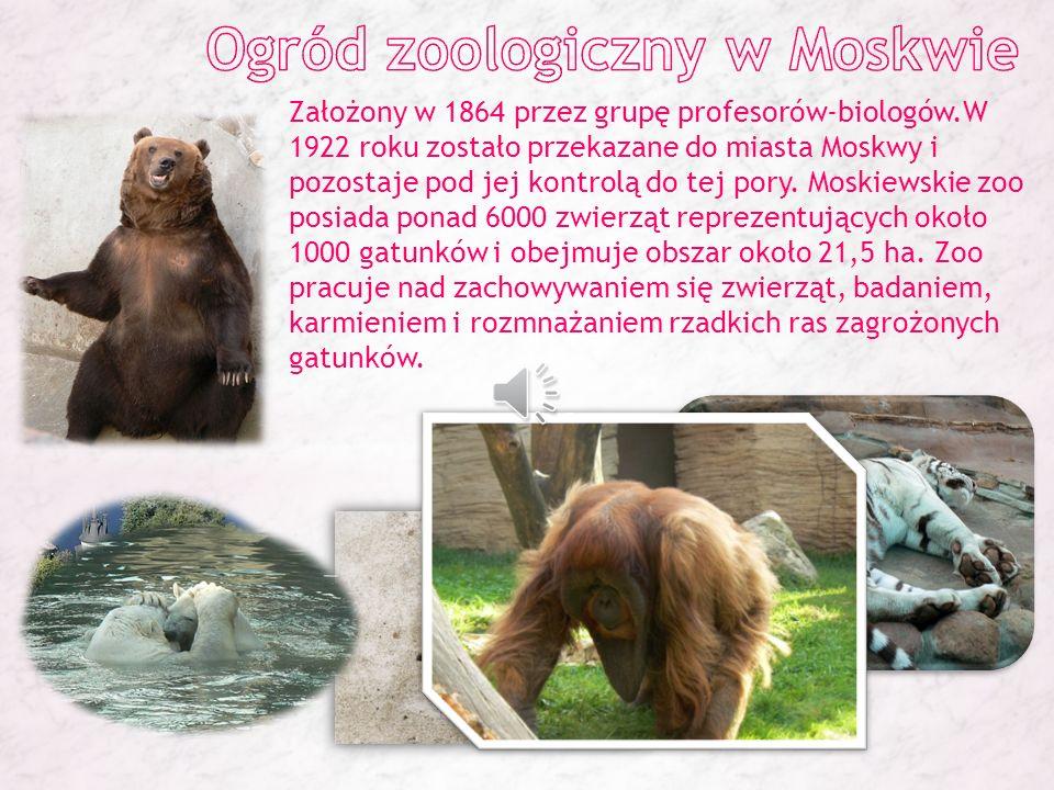 Ogród zoologiczny w Moskwie