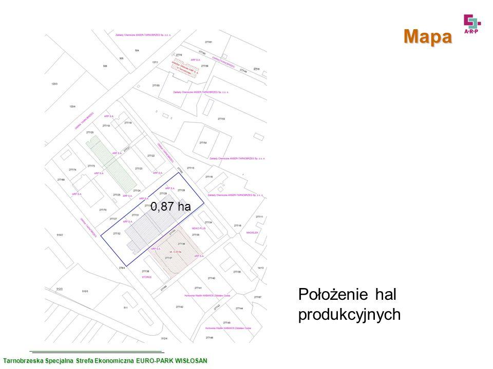 Mapa Położenie hal produkcyjnych 0,87 ha