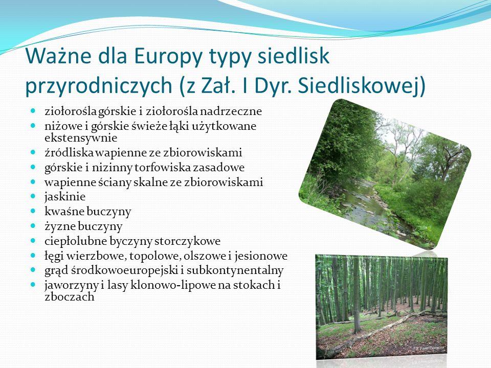 Ważne dla Europy typy siedlisk przyrodniczych (z Zał. I Dyr