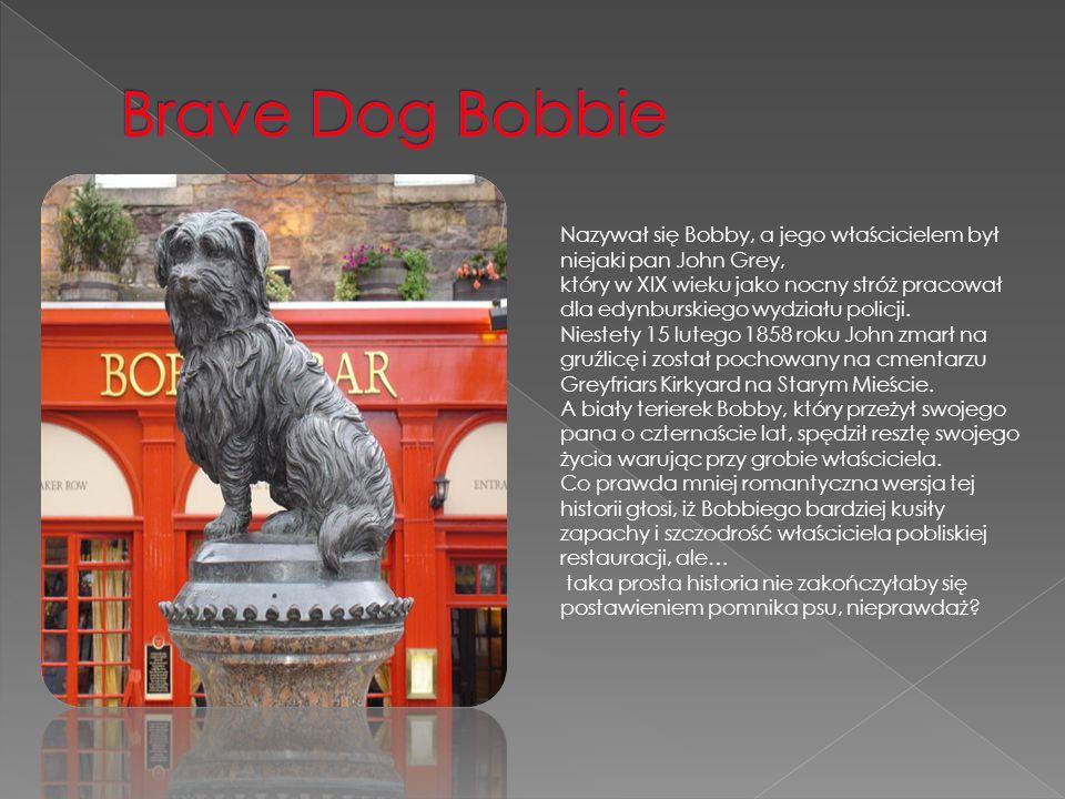 Brave Dog Bobbie Nazywał się Bobby, a jego właścicielem był niejaki pan John Grey,