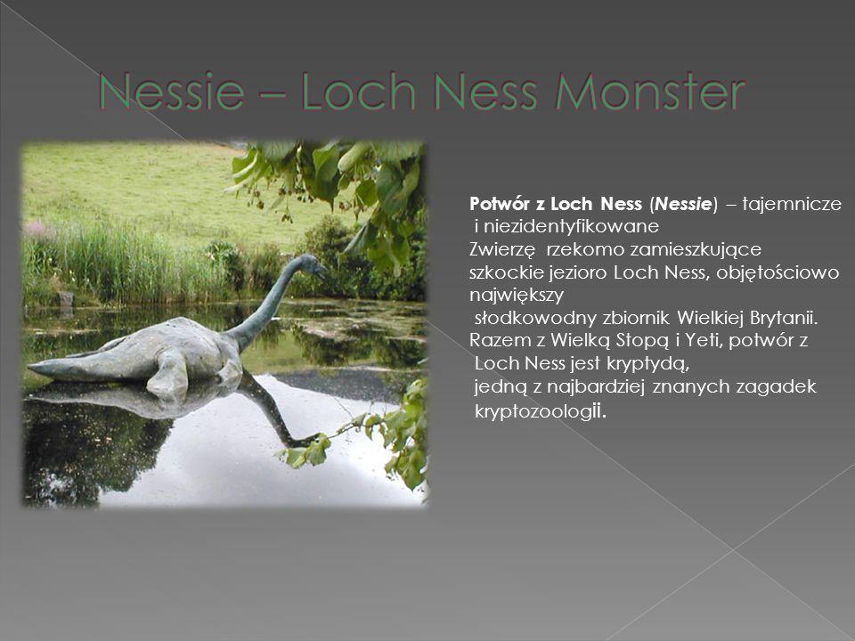Nessie – Loch Ness Monster
