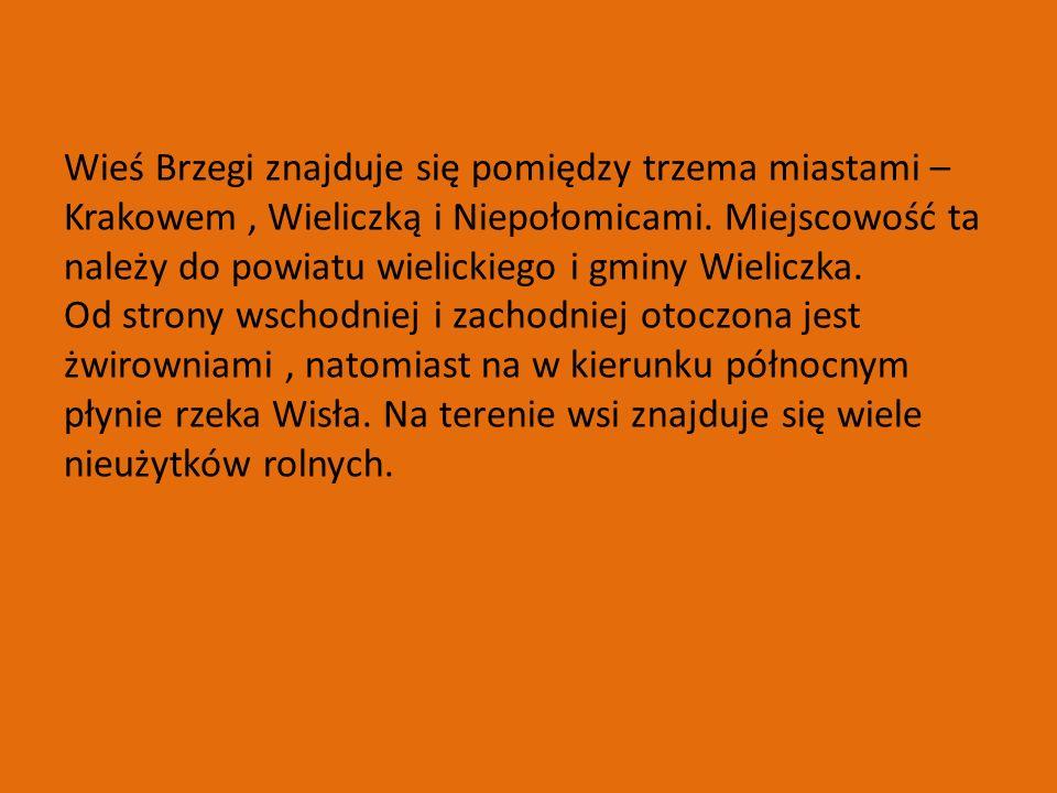Wieś Brzegi znajduje się pomiędzy trzema miastami –Krakowem , Wieliczką i Niepołomicami.