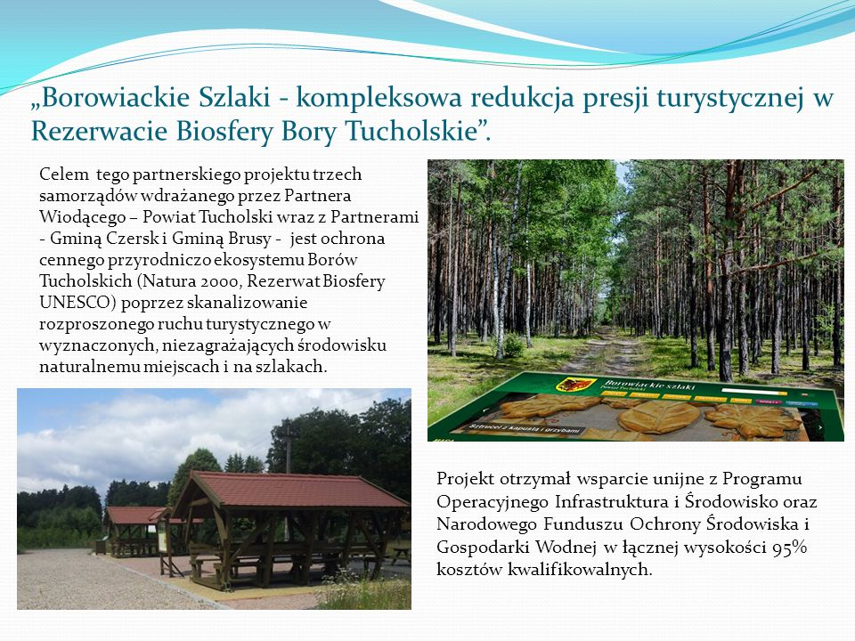 """""""Borowiackie Szlaki - kompleksowa redukcja presji turystycznej w Rezerwacie Biosfery Bory Tucholskie ."""