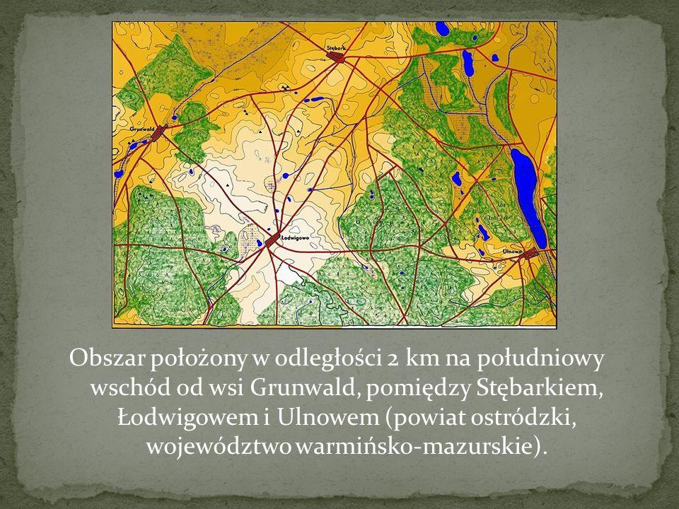 Obszar położony w odległości 2 km na południowy wschód od wsi Grunwald, pomiędzy Stębarkiem, Łodwigowem i Ulnowem (powiat ostródzki, województwo warmińsko-mazurskie).