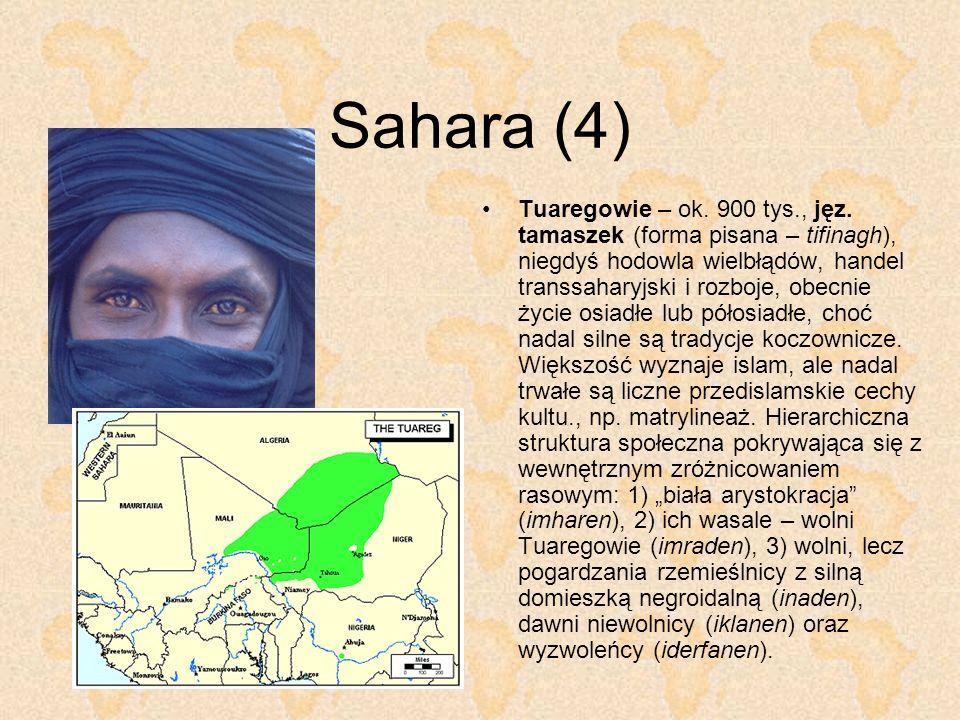 Sahara (4)