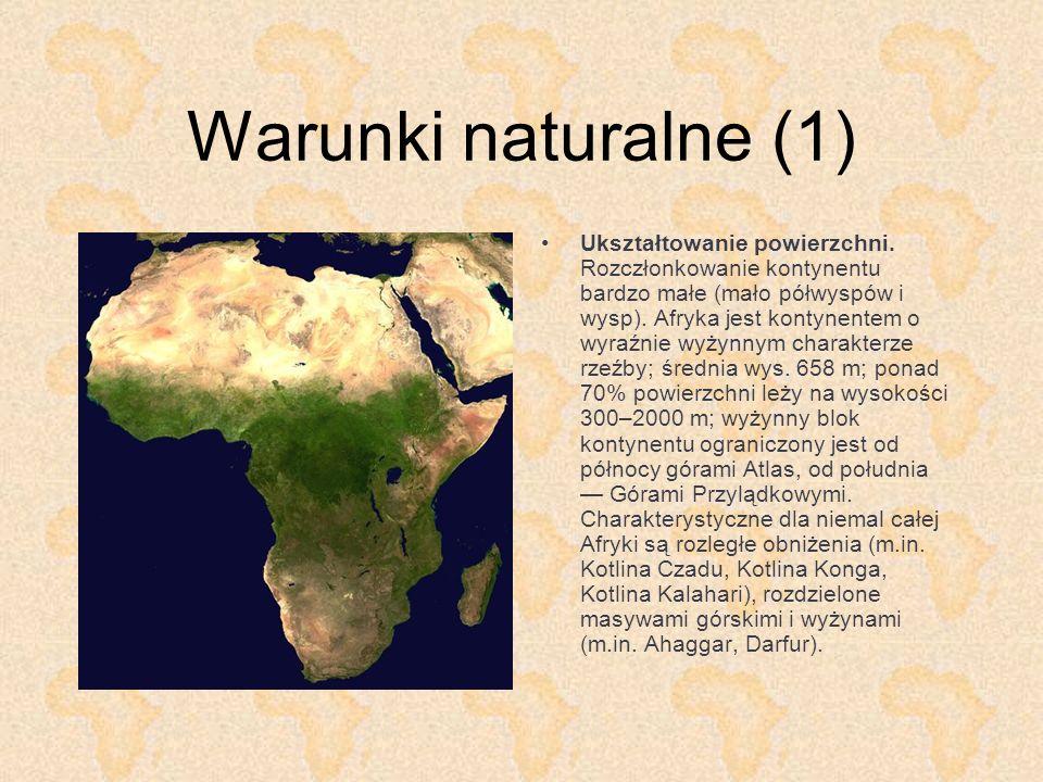 Warunki naturalne (1)