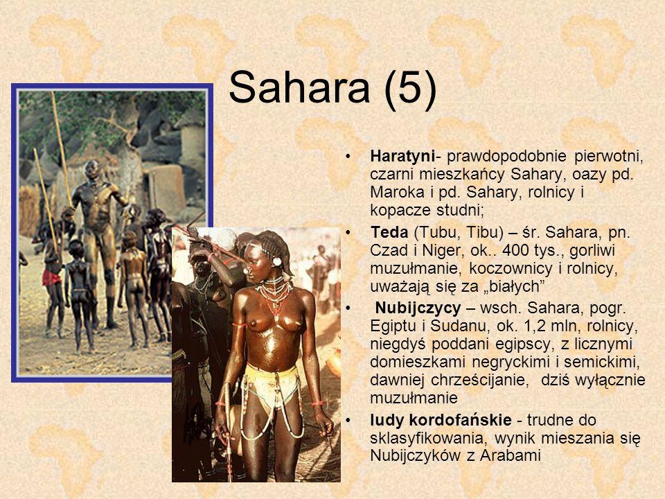 Sahara (5) Haratyni- prawdopodobnie pierwotni, czarni mieszkańcy Sahary, oazy pd. Maroka i pd. Sahary, rolnicy i kopacze studni;