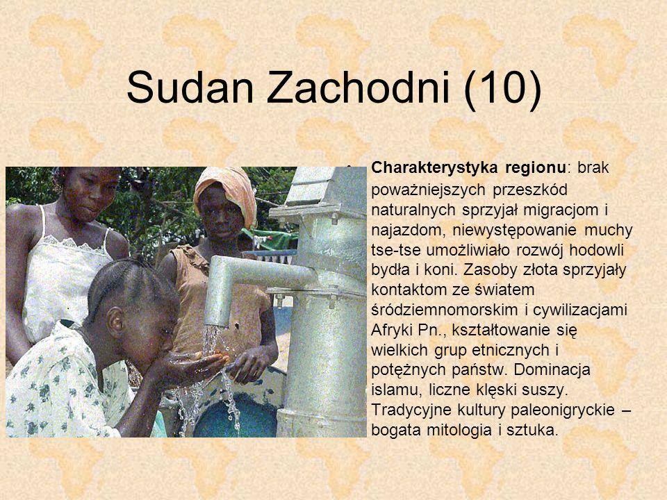 Sudan Zachodni (10)