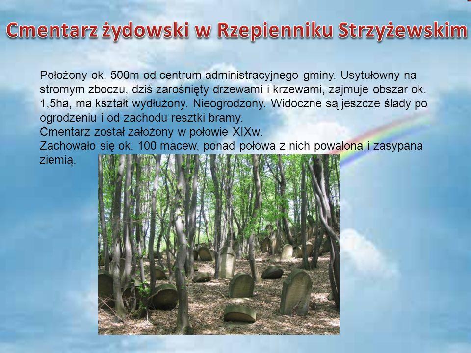 Cmentarz żydowski w Rzepienniku Strzyżewskim