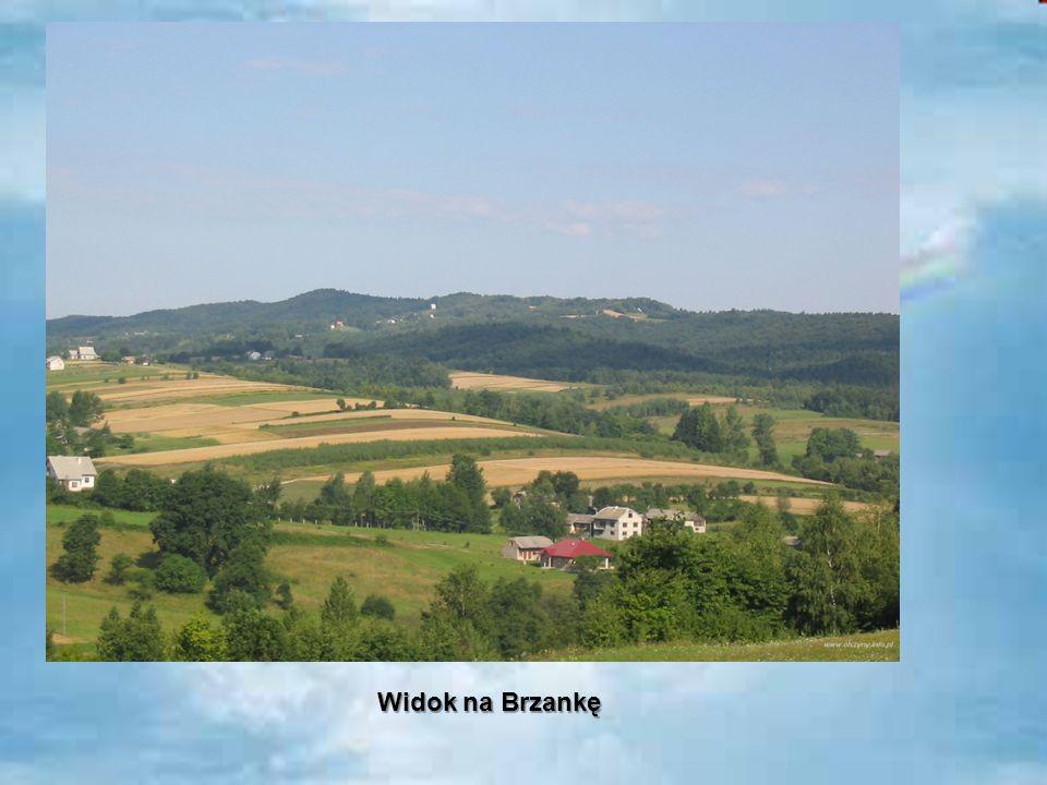 Widok na Brzankę