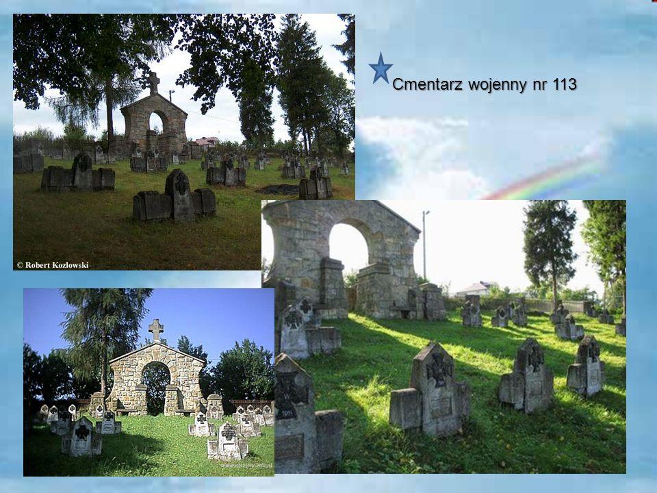Cmentarz wojenny nr 113