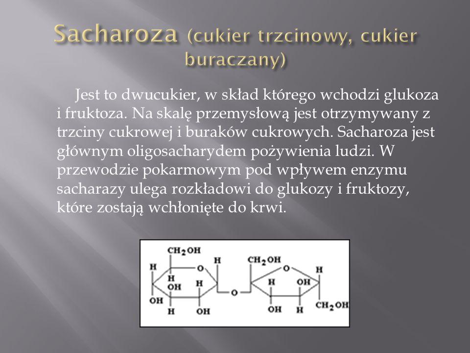 Sacharoza (cukier trzcinowy, cukier buraczany)