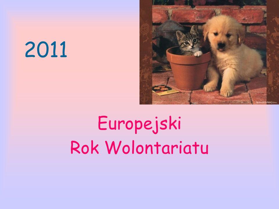 Europejski Rok Wolontariatu