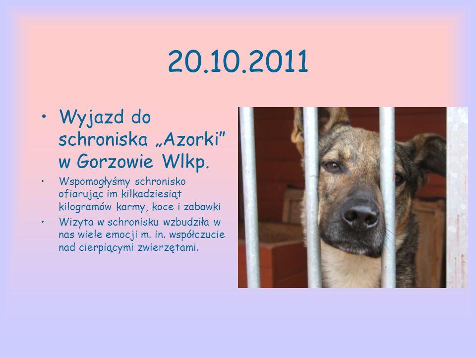 """20.10.2011 Wyjazd do schroniska """"Azorki w Gorzowie Wlkp."""