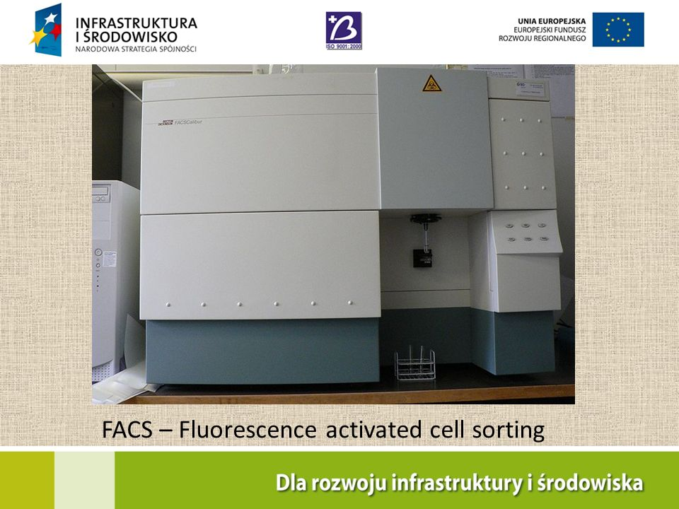 FACS – Fluorescence activated cell sorting
