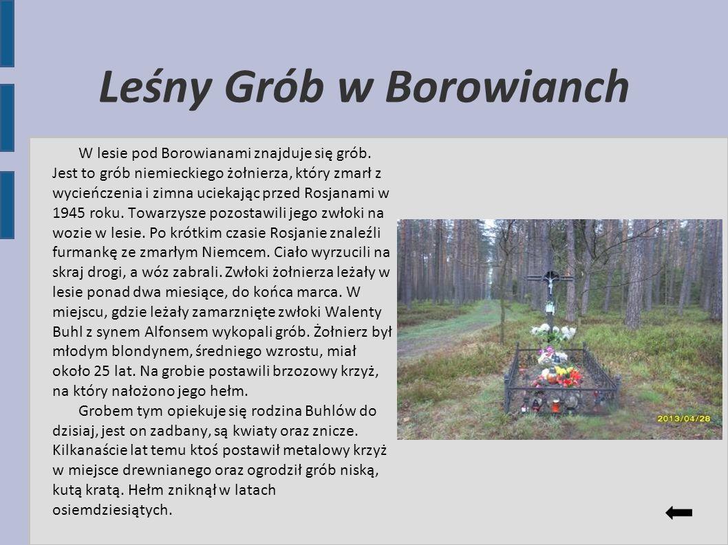 Leśny Grób w Borowianch