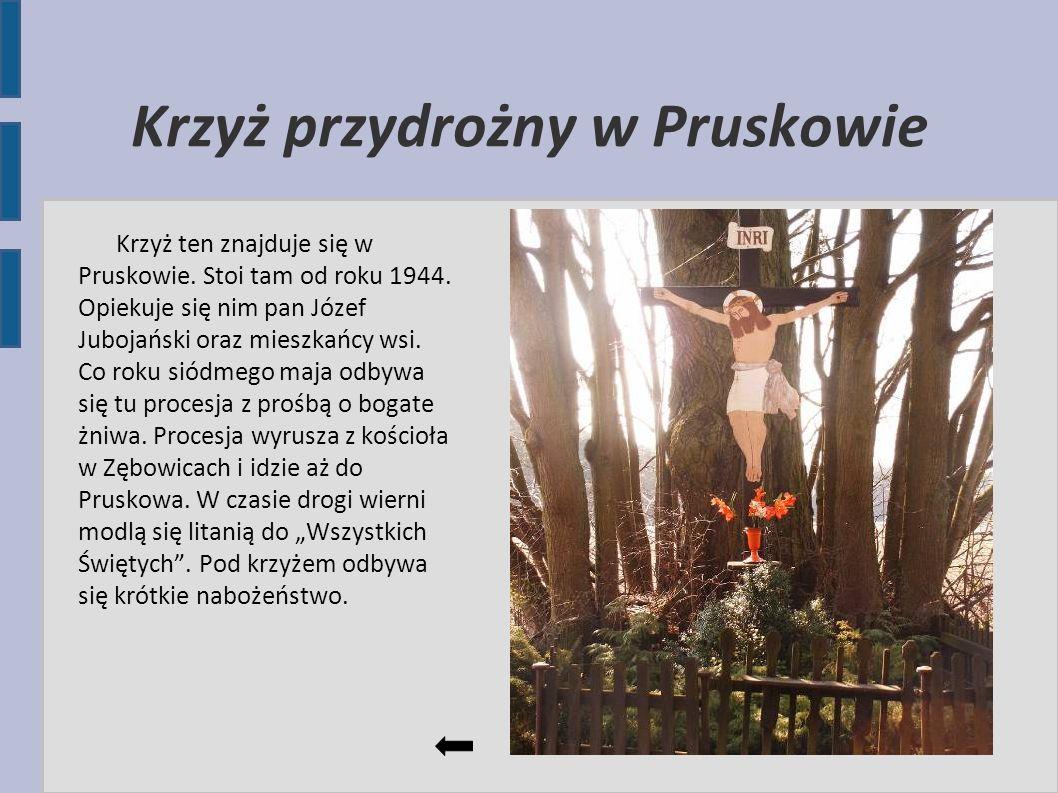 Krzyż przydrożny w Pruskowie