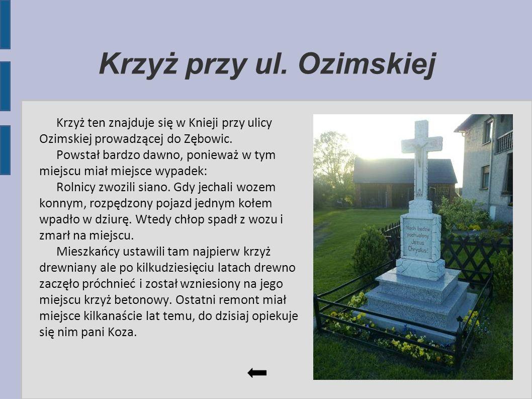 Krzyż przy ul. Ozimskiej