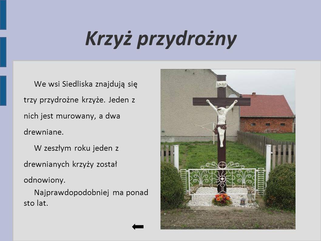 Krzyż przydrożny We wsi Siedliska znajdują się trzy przydrożne krzyże. Jeden z nich jest murowany, a dwa drewniane.