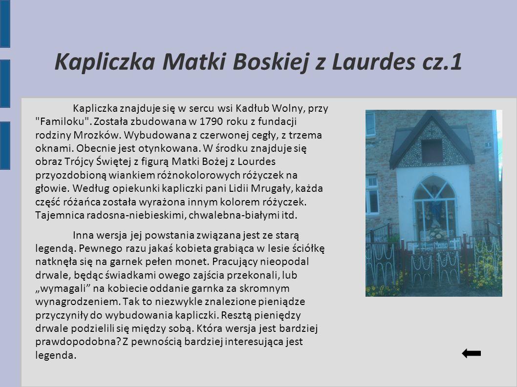Kapliczka Matki Boskiej z Laurdes cz.1