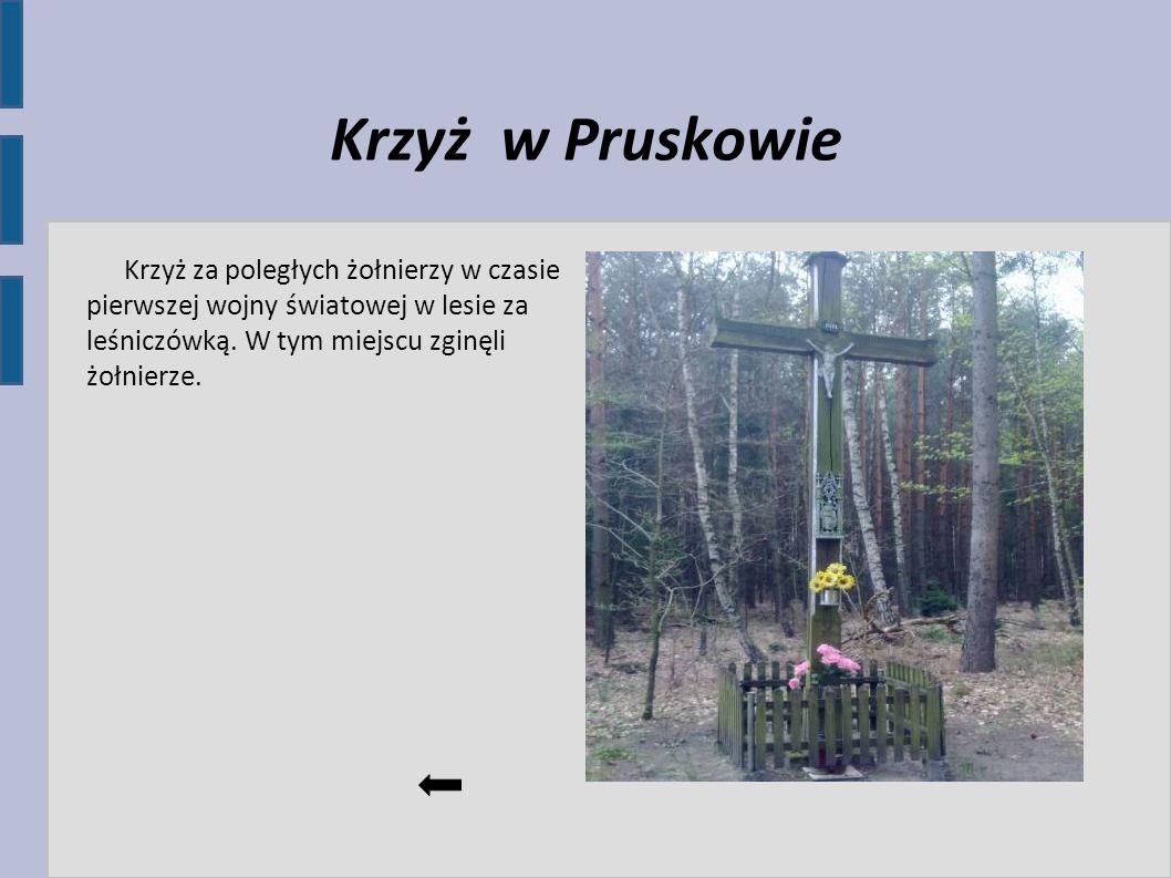 Krzyż w Pruskowie Krzyż za poległych żołnierzy w czasie pierwszej wojny światowej w lesie za leśniczówką.