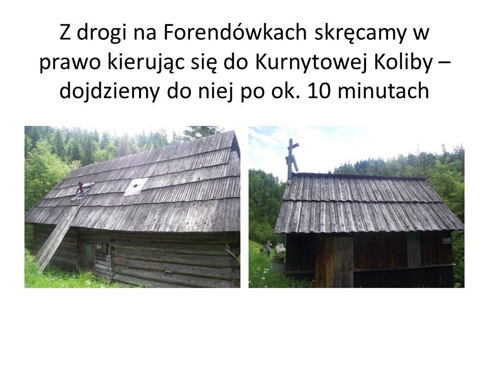Z drogi na Forendówkach skręcamy w prawo kierując się do Kurnytowej Koliby – dojdziemy do niej po ok.