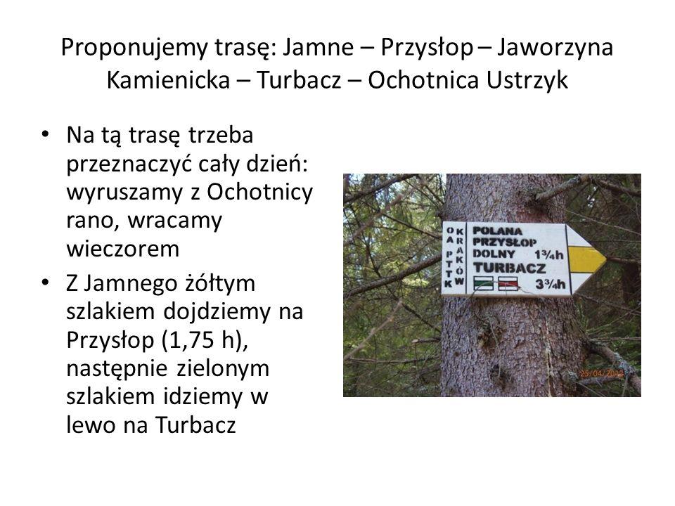 Proponujemy trasę: Jamne – Przysłop – Jaworzyna Kamienicka – Turbacz – Ochotnica Ustrzyk